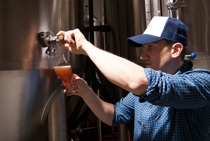 sesma_brewing_cerveza_empresa5